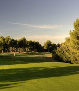 Real Golf De Benidat