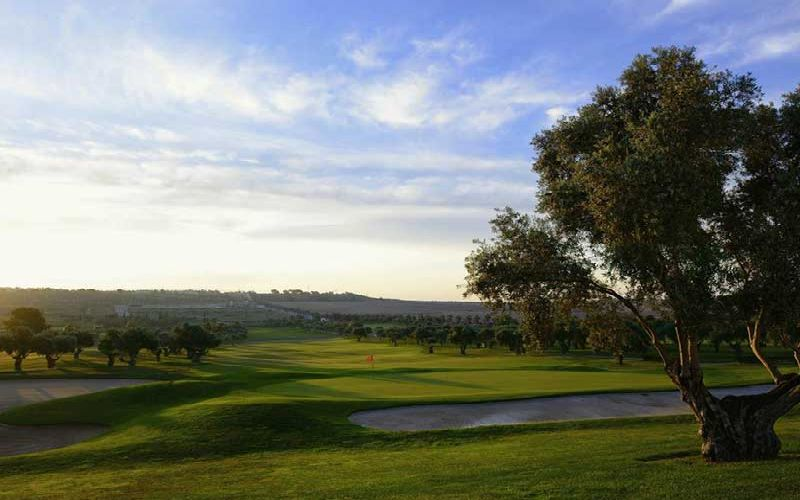 hotel bonalba alicante golf course