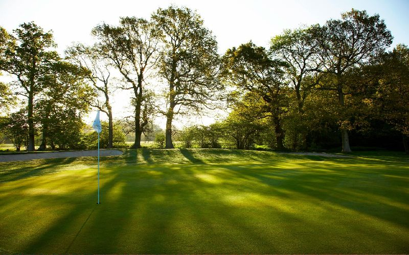 lingfield park golf course trees