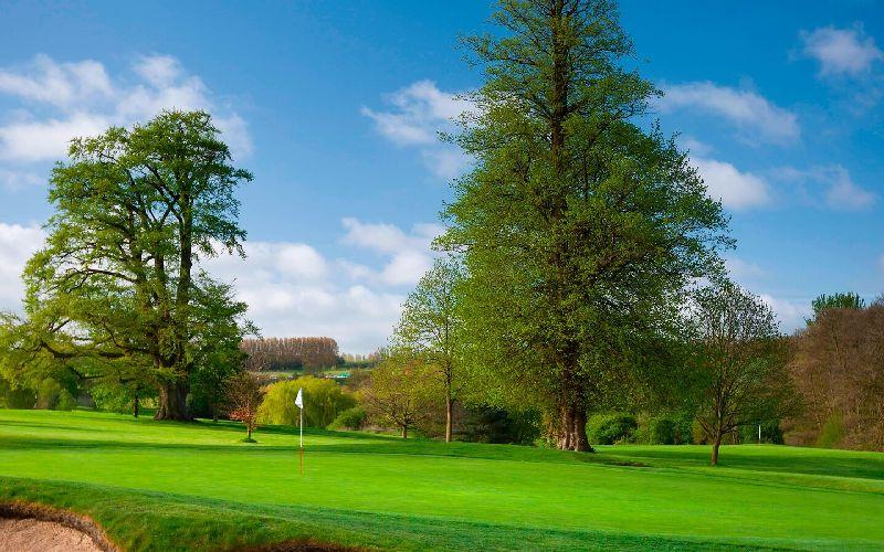 tudor park golf course green