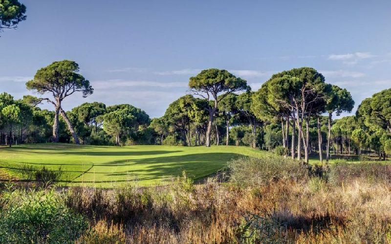 cornelia de luxe golf resort faldo course cornelia diamond golf