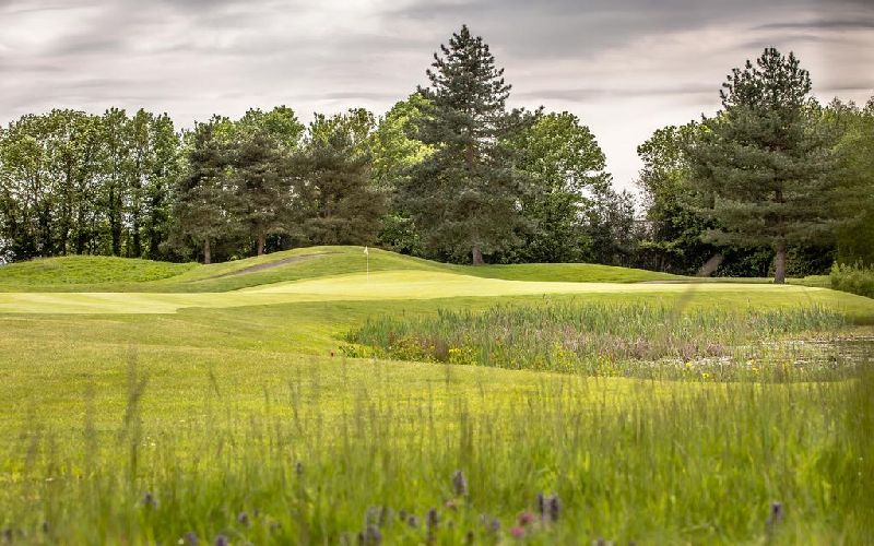 east sussex national golf course green