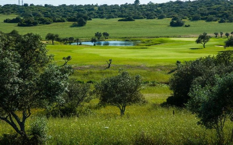 alamos golf course fairway