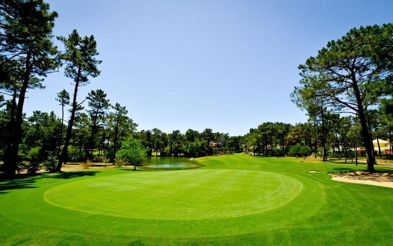 aroeira I golf course green