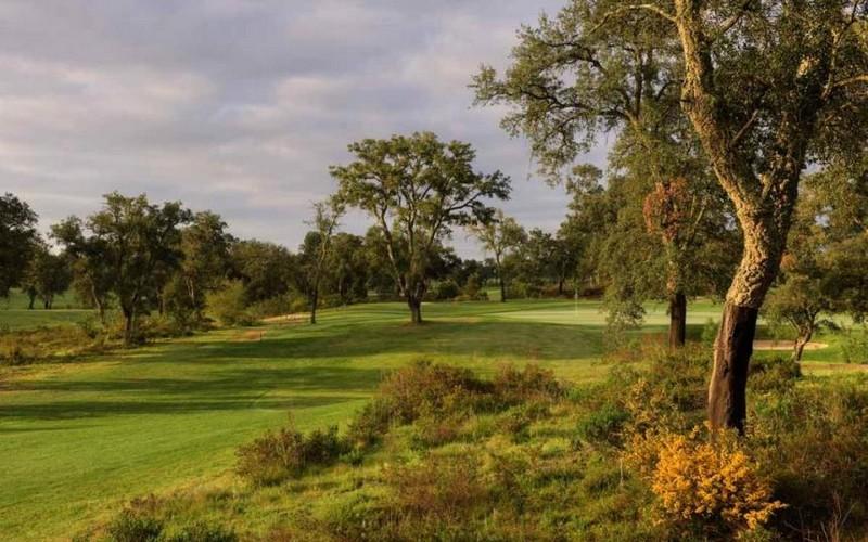 ribagolfe II golf course trees