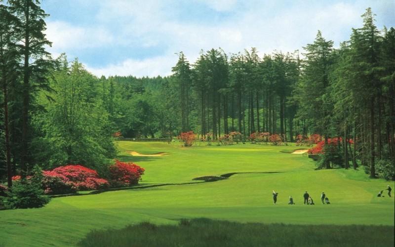 hunting & priestman golf courses fairway