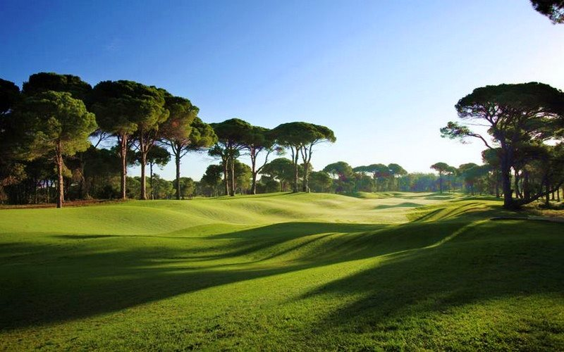 pines & dunes courses