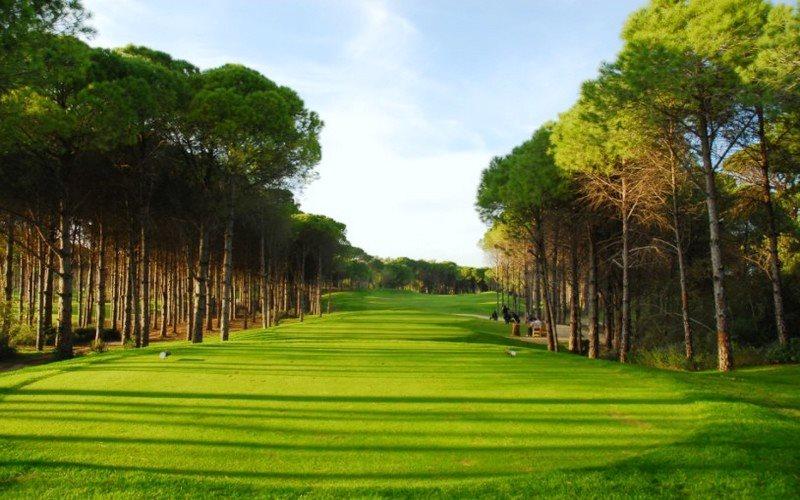 pines-dunes-courses-tee